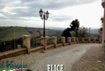elice